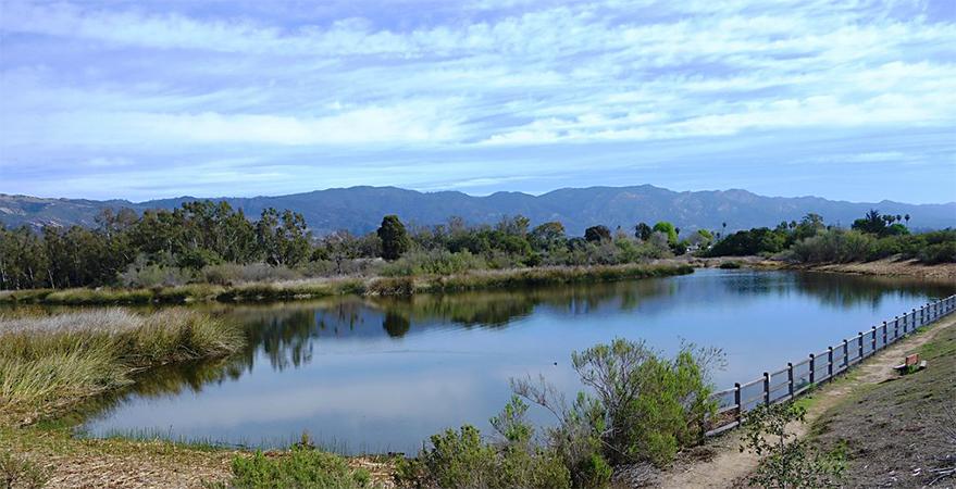 reflections in Lake Los Carneros