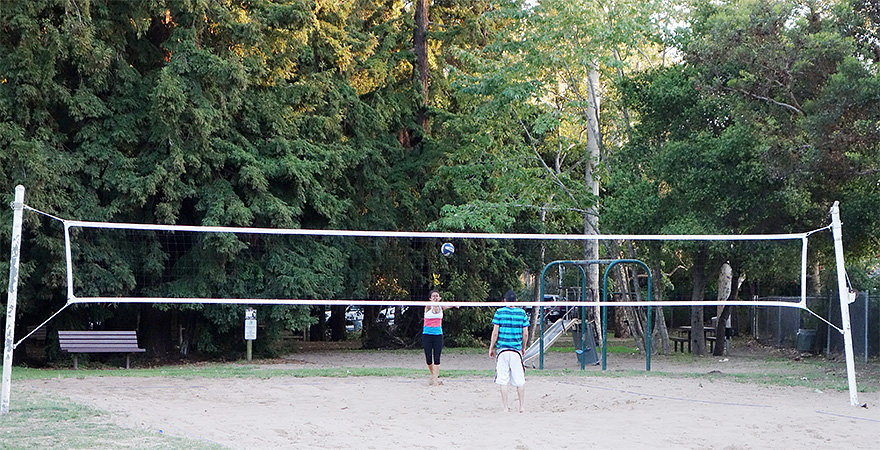 evening volleyball